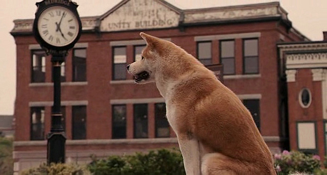 Movie Of Dog At Train Station