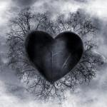 drama2-darkheart